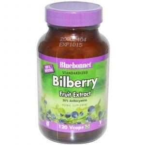 Экстракт черники, Bluebonnet Nutrition, 120 кап.