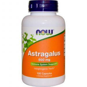 Астрагал, Astragalus, Now Foods, 500 мг, 100 капс