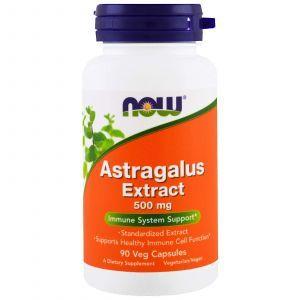 Экстракт Астрагала, Astragalus Extract, Now Foods, 500 мг, 90 кап